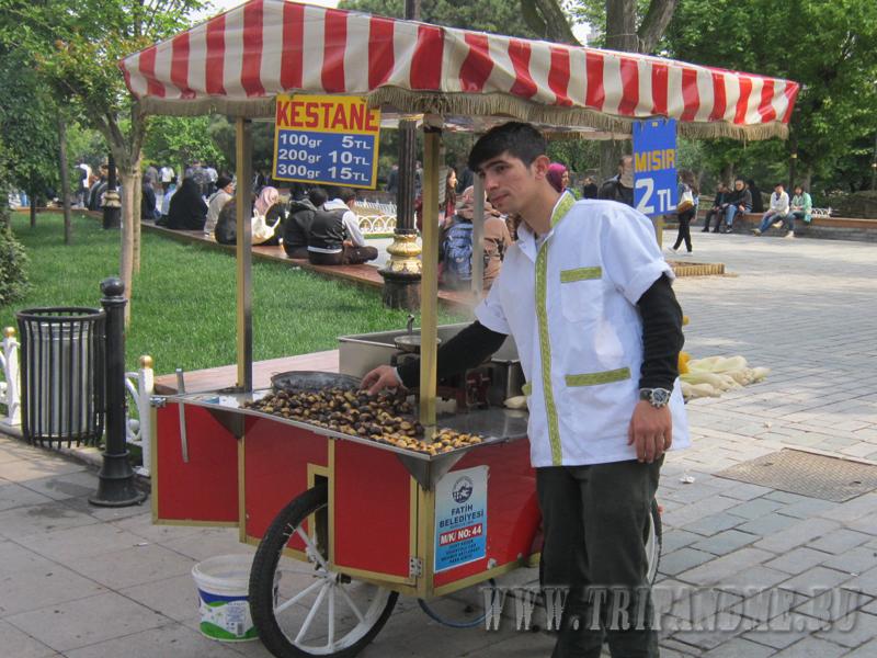 каштаны в Стамбуле