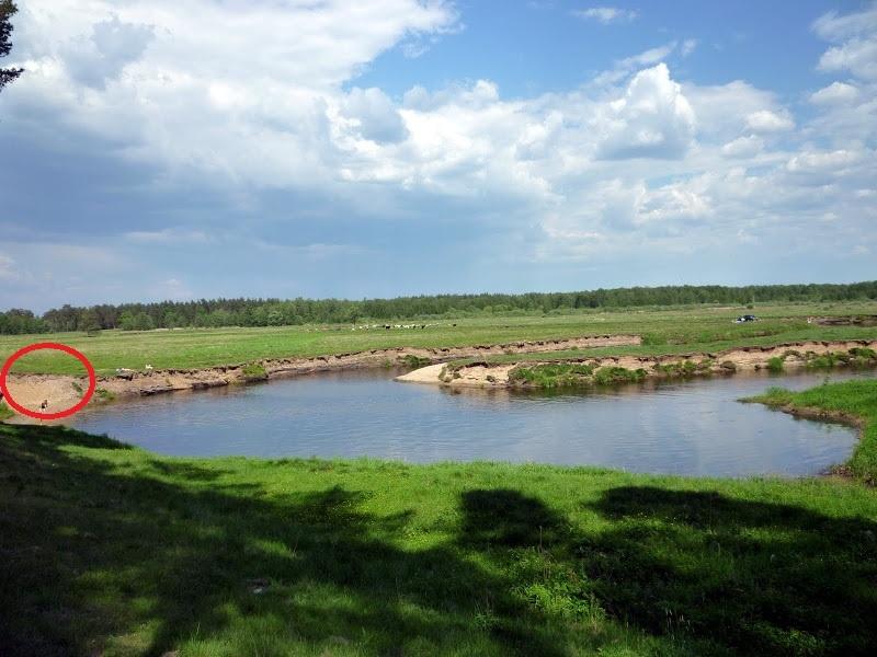 В этом месте река Судогда делает замысловатый поворот