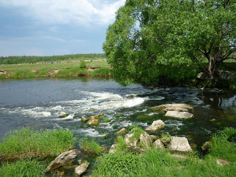 река Судогда во Владимирской области