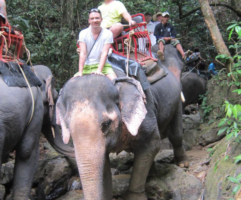 слоны в Тайланде