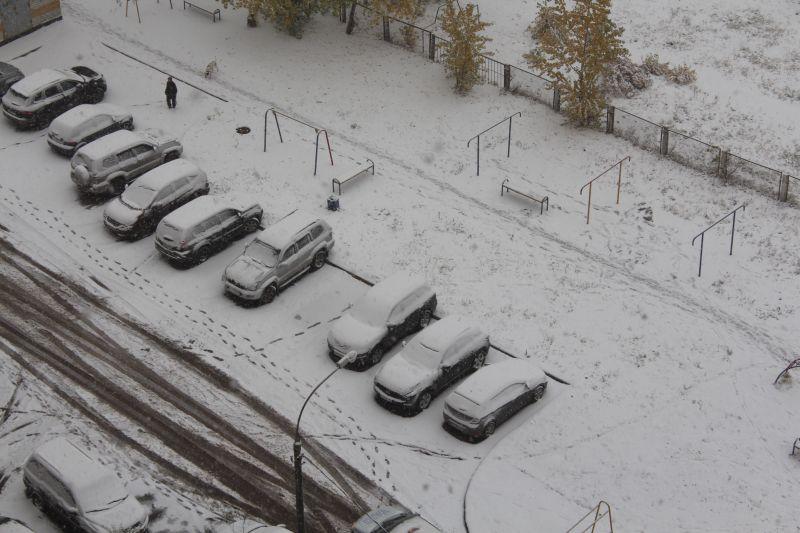 sneg_idet