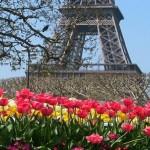 Летим дешево в Бухарест и Париж – от 7 200 рублей