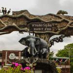 Для взрослых и детей — посещаем зоопарк Дусит в Бангкоке