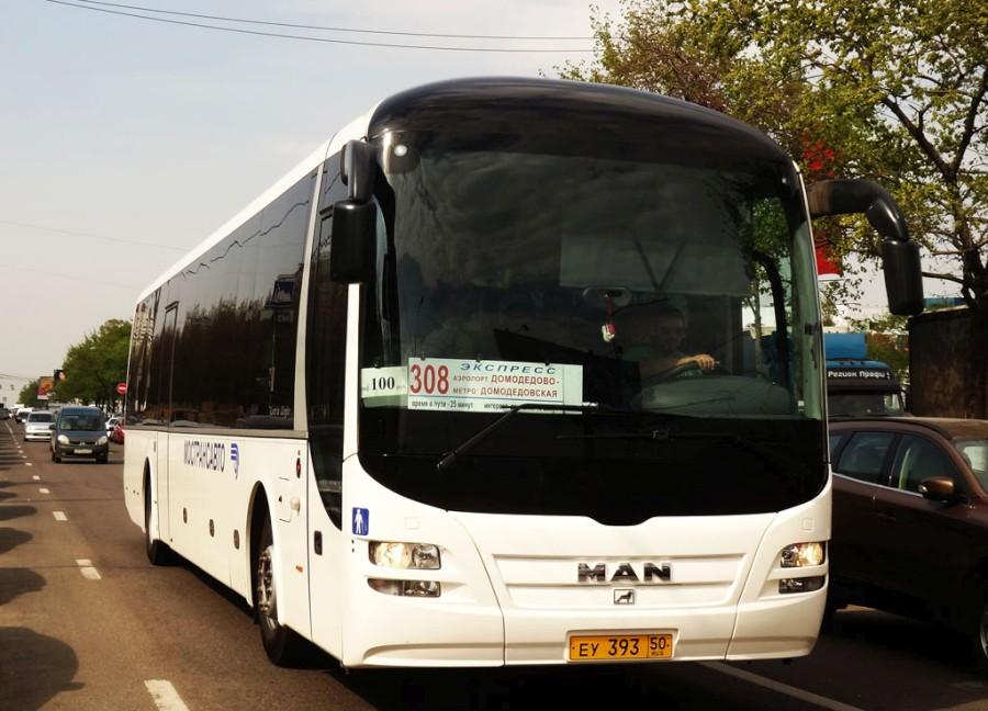bus_domodedovo