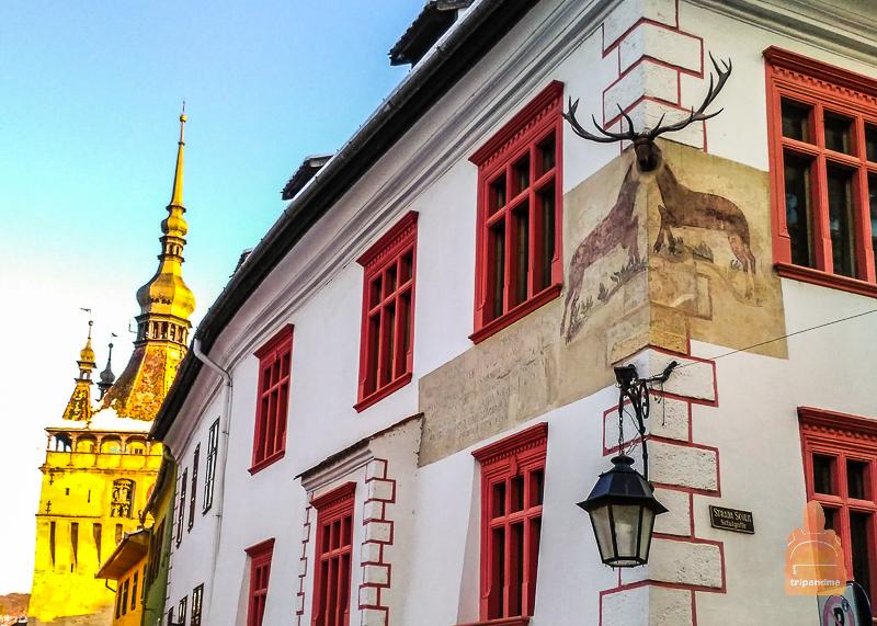 Здания достойные снимка