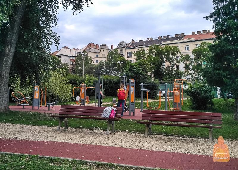 В парке вокруг озера есть площадка со спортивными тренажерами