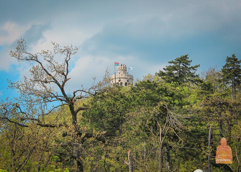 Башня Елизаветы и смотровая площадка