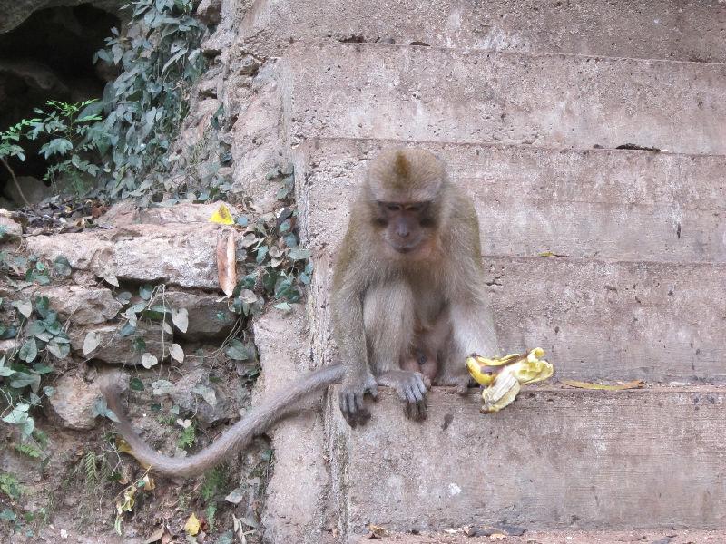 храм Ват Пхам в Таиланде