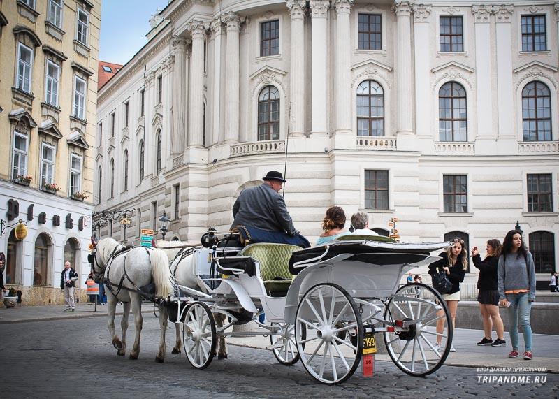 Катание на лошадях в Вене