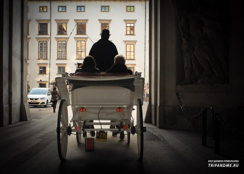 Конная прогулка по территории дворца Хофбург в Вене