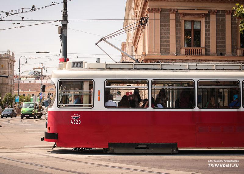 Трамвай в Вене