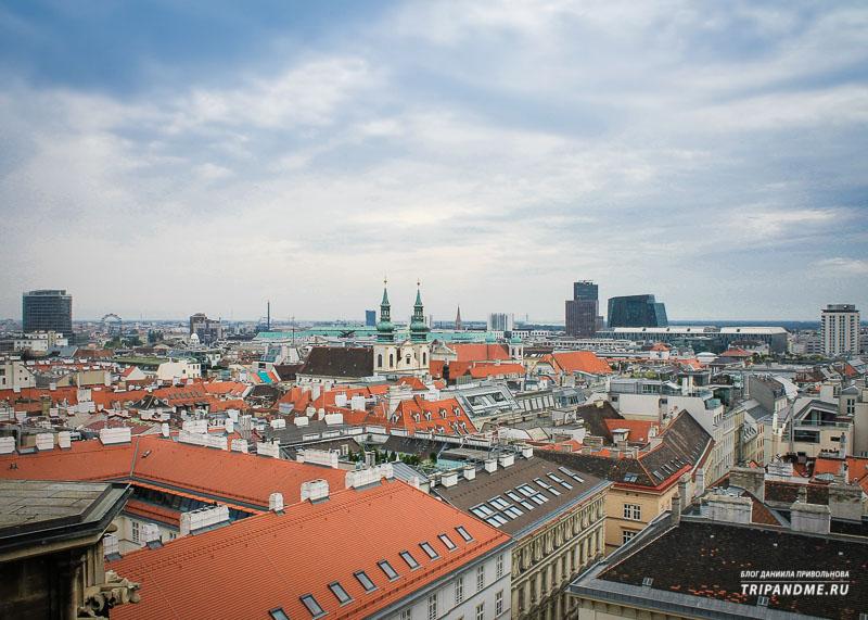 Лучшая смотровая площадка Вены