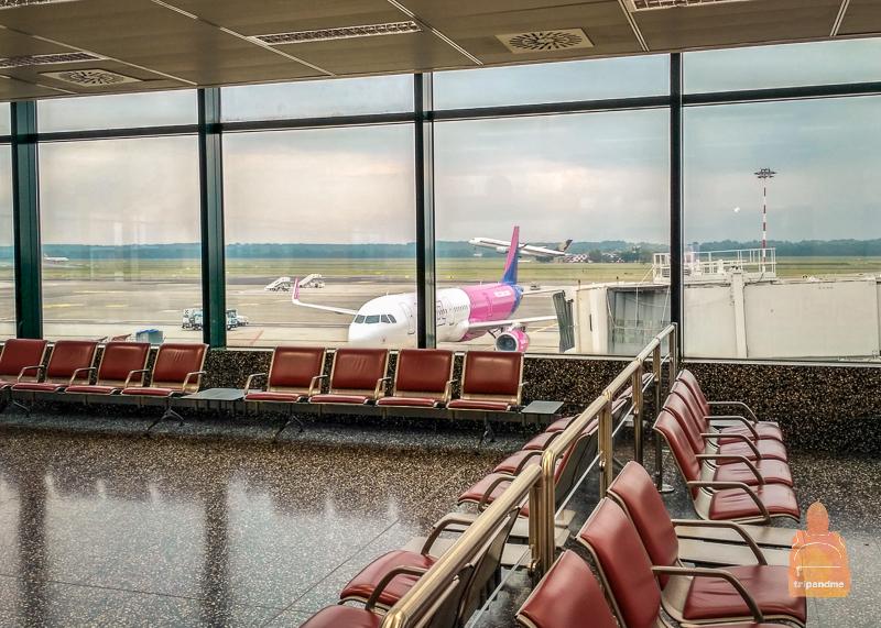 Самолёт Wizzair у терминала аэропорта