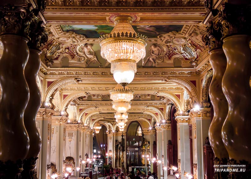 Как выглядит элитное кафе в Венгрии изнутри