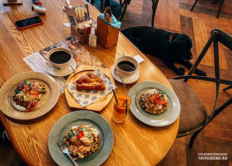 Кофейня, куда можно с собакой