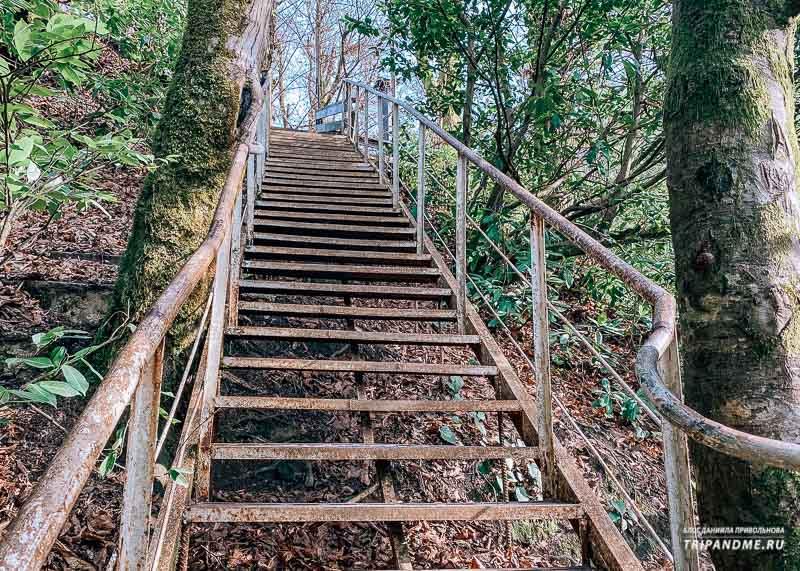 Лестница к Ореховскому водопаду
