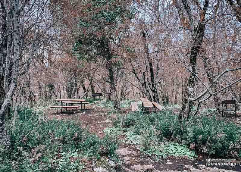 Бесплатные скамейки для посетителей