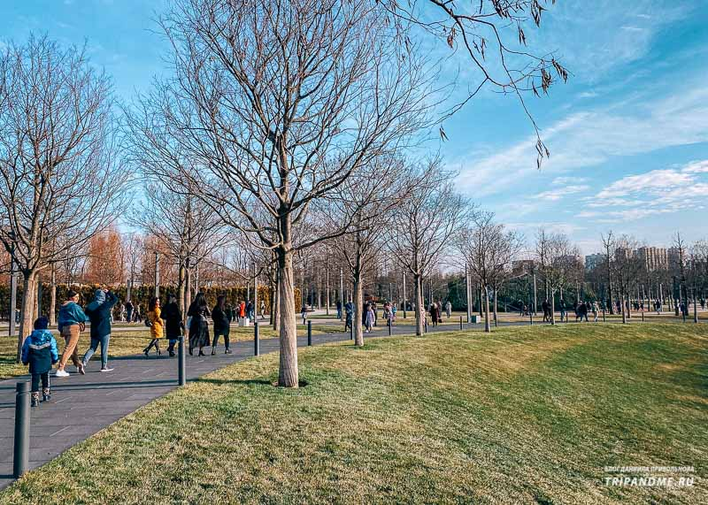 Парк Галицкого в январе 2021 года