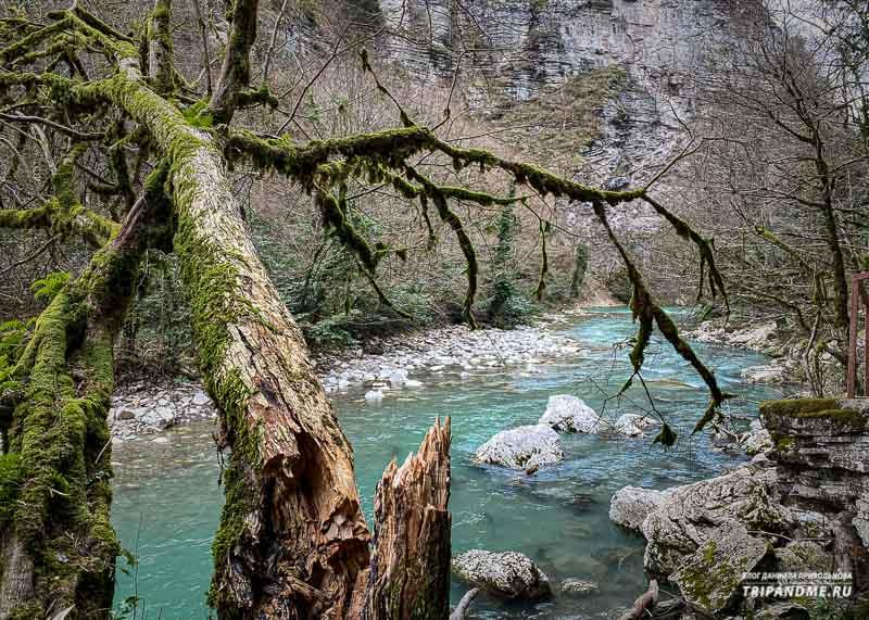 Сказочные пейзжи в каньоне Чертовы ворота