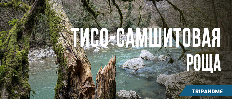 Одна из самых посещаемых природных достопримечательностей Сочи
