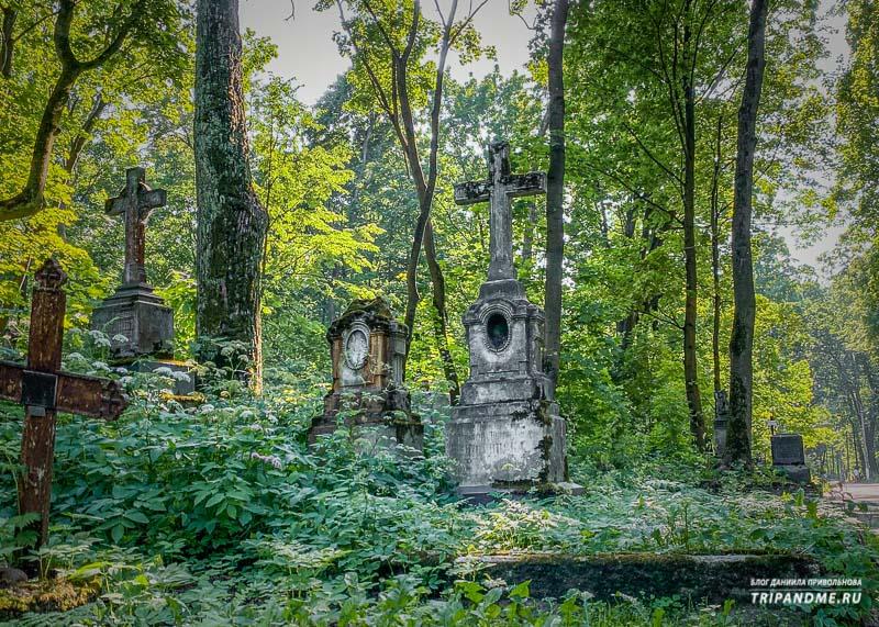 Некоторые надгробия заросли и их почти не видно