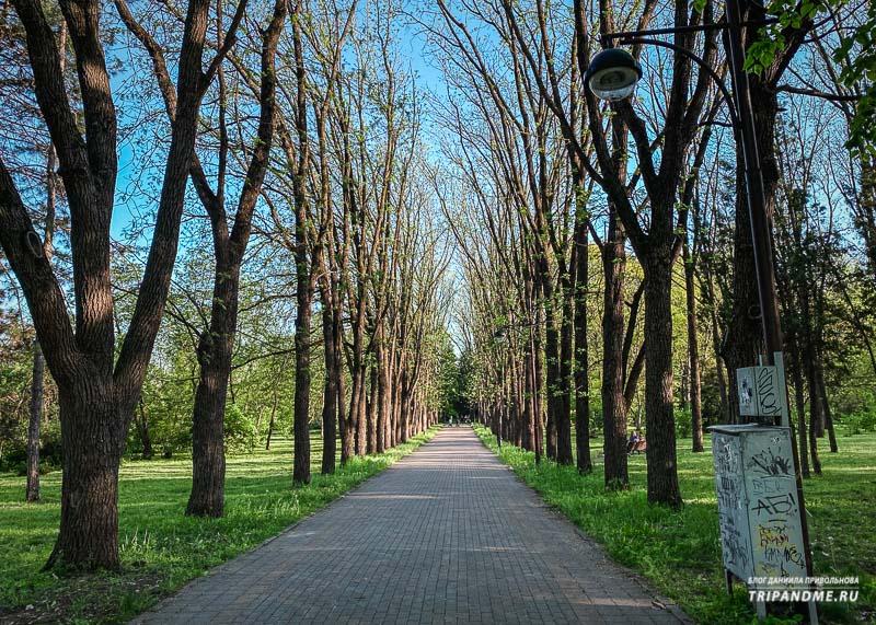 Прогулочные дорожки в Ботаническом саду