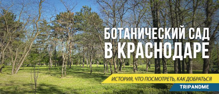 Ботанический сад в Краснодаре