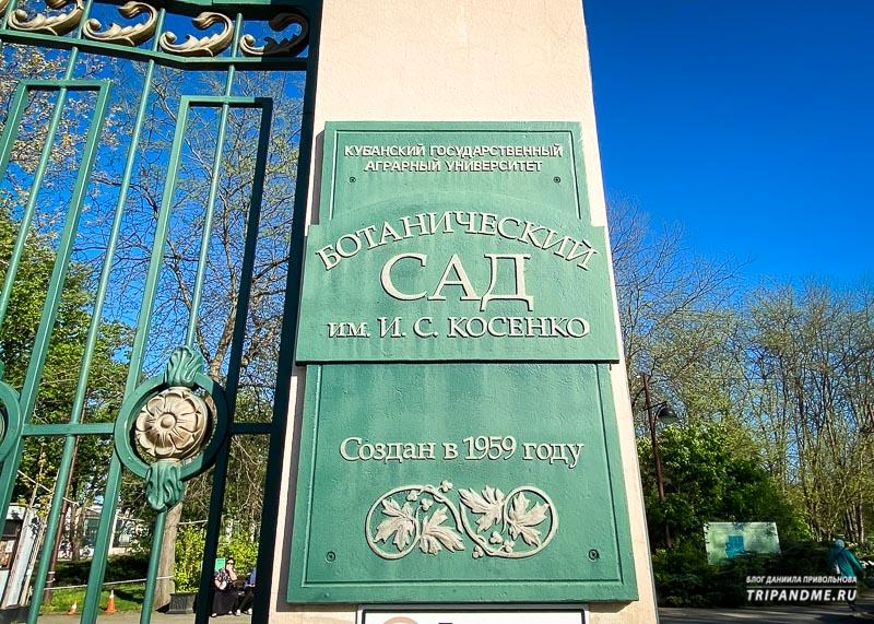 Ботанический сад организован в середине 20 века