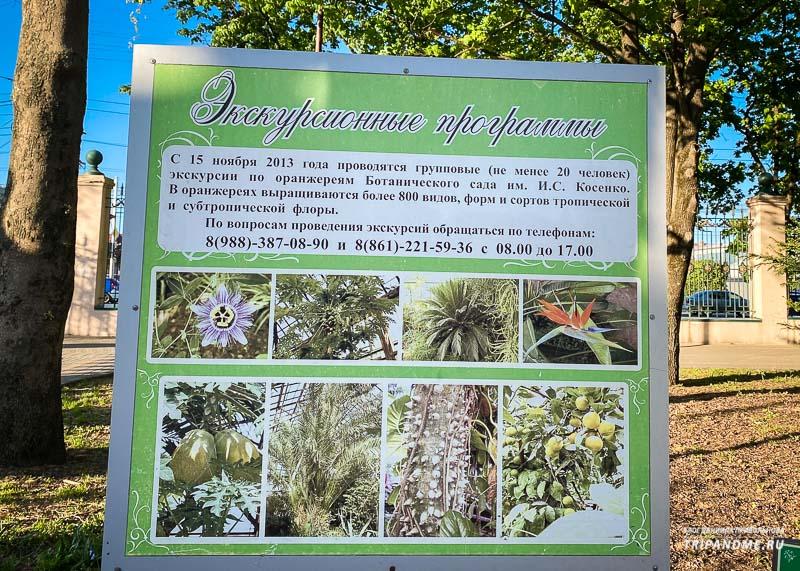 Экскурсии по Ботаническому саду
