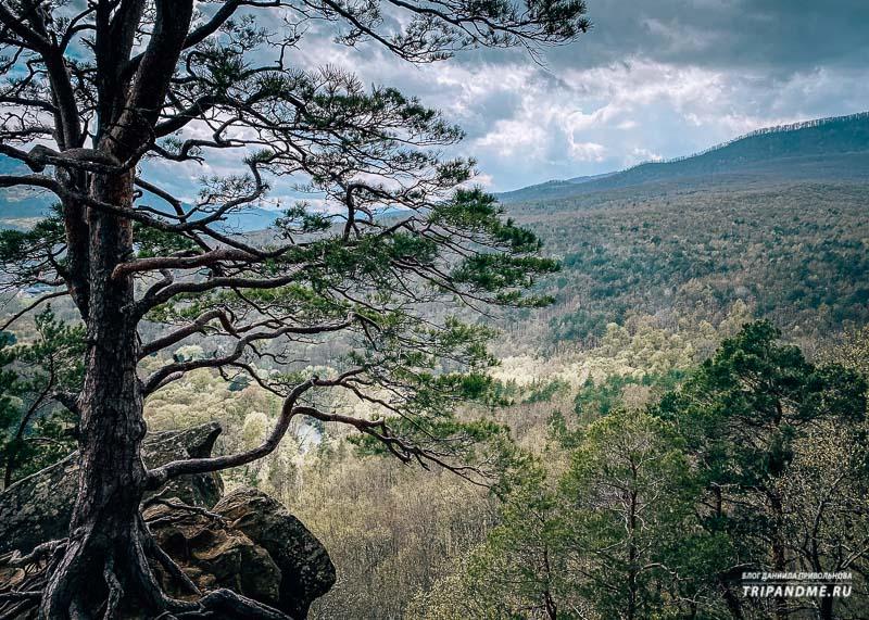 Планческие скалы весной