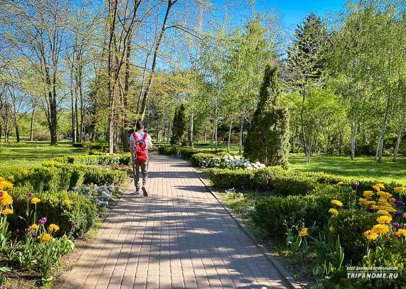 Что цветет в Ботаническому саду