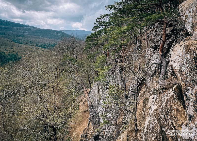 В апреде листвой покрыты еще не все деревья