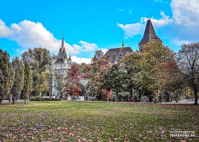 Осенние деревья в Будапеште